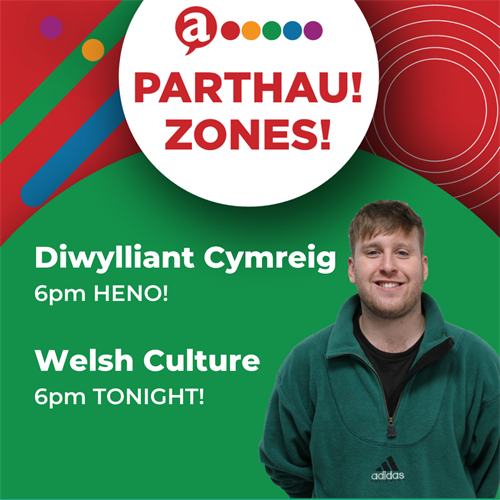Welsh Culture Zone